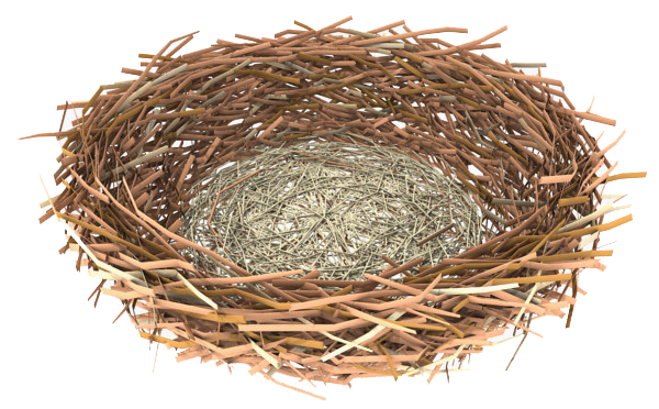 vector free library Nest Clipart transparent background