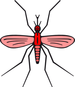 graphic transparent library Mosquito In Red Color Version