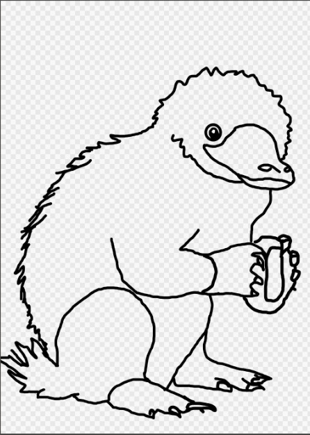 vector royalty free stock Niffler drawing coloring page. How to draw a