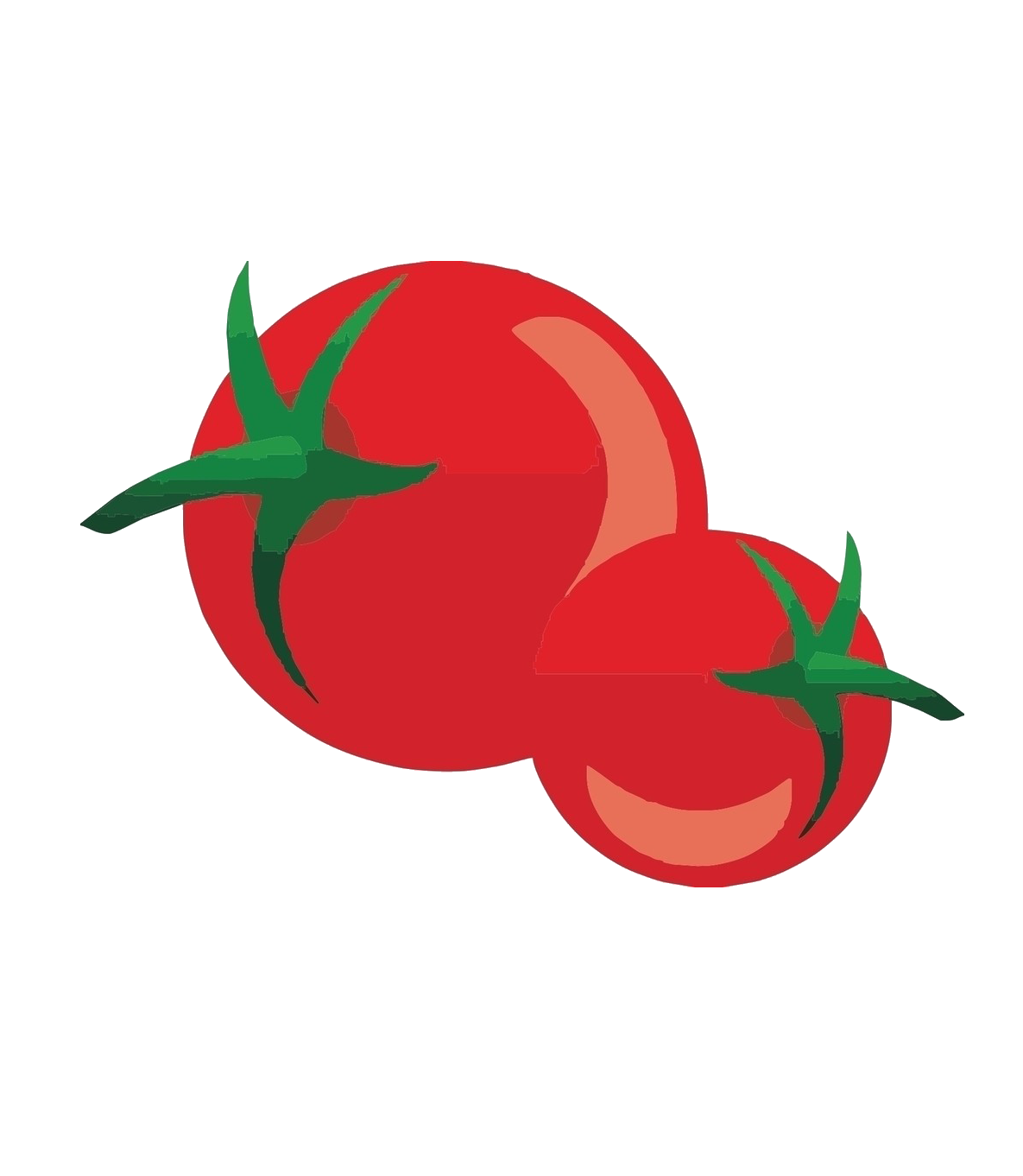 png transparent library Pizza cartoon transprent png. Nightshade drawing tomato flower