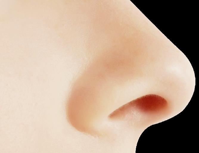 jpg free Human Nose PNG Image