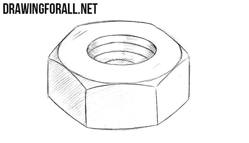 graphic royalty free How to draw a. Nut drawing