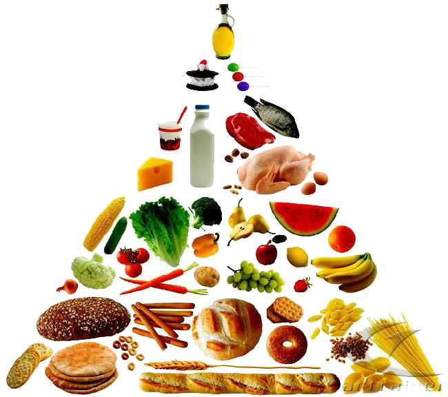clip art library stock Food pyramid healthy eating. Nutrition clipart
