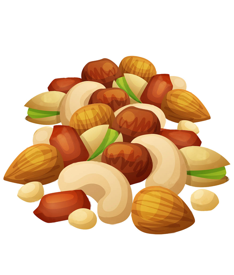 vector free stock Peanuts mixed nut transparent. Nuts clipart.