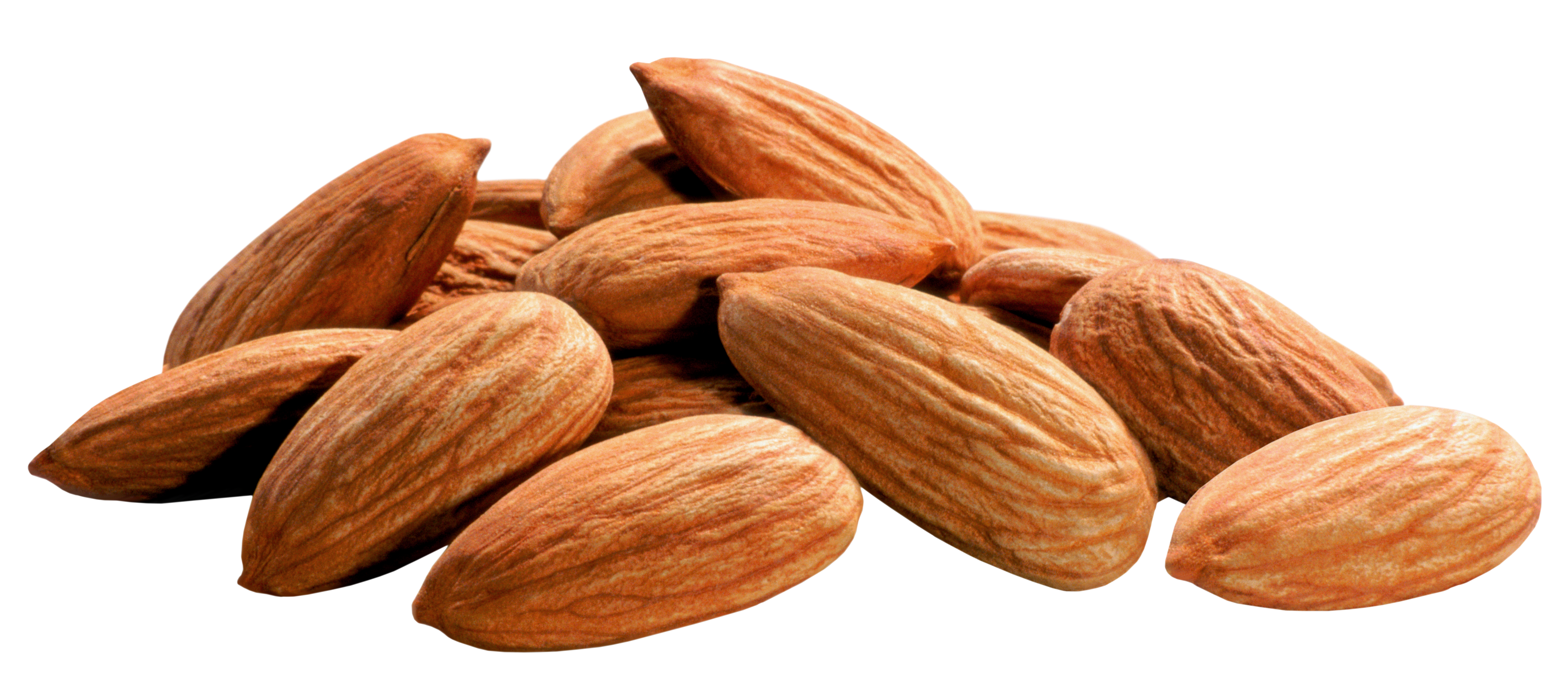 picture freeuse download Almonds png image gallery. Nuts clipart.