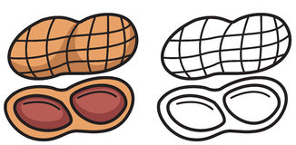 clip art free library Nuts clipart black and white. Free cliparts download clip