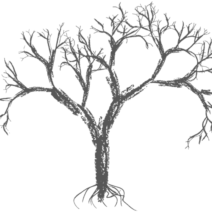 banner royalty free stock Under an oak willow. Drawing nature crayon