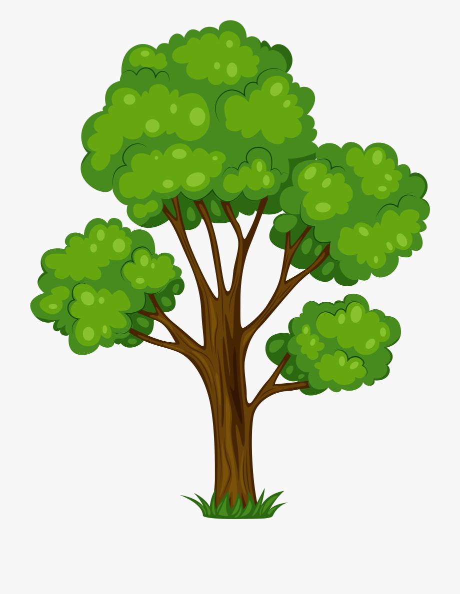 clip free library Oak clipart. Tree clip art free