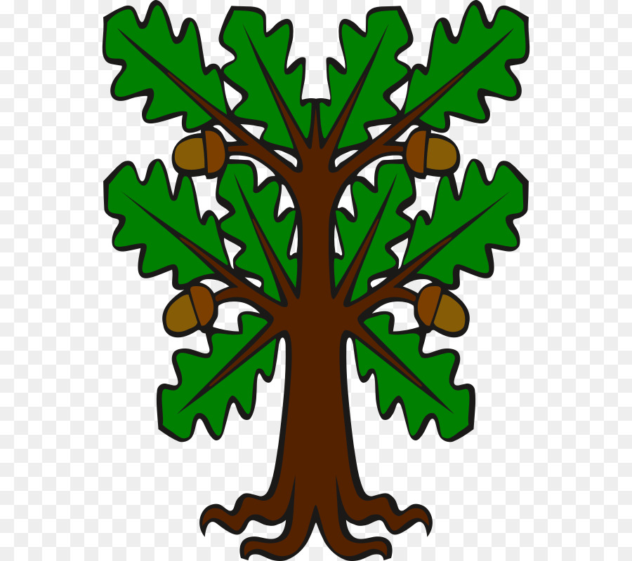 free stock Tree drawing graphics illustration. Oak clipart