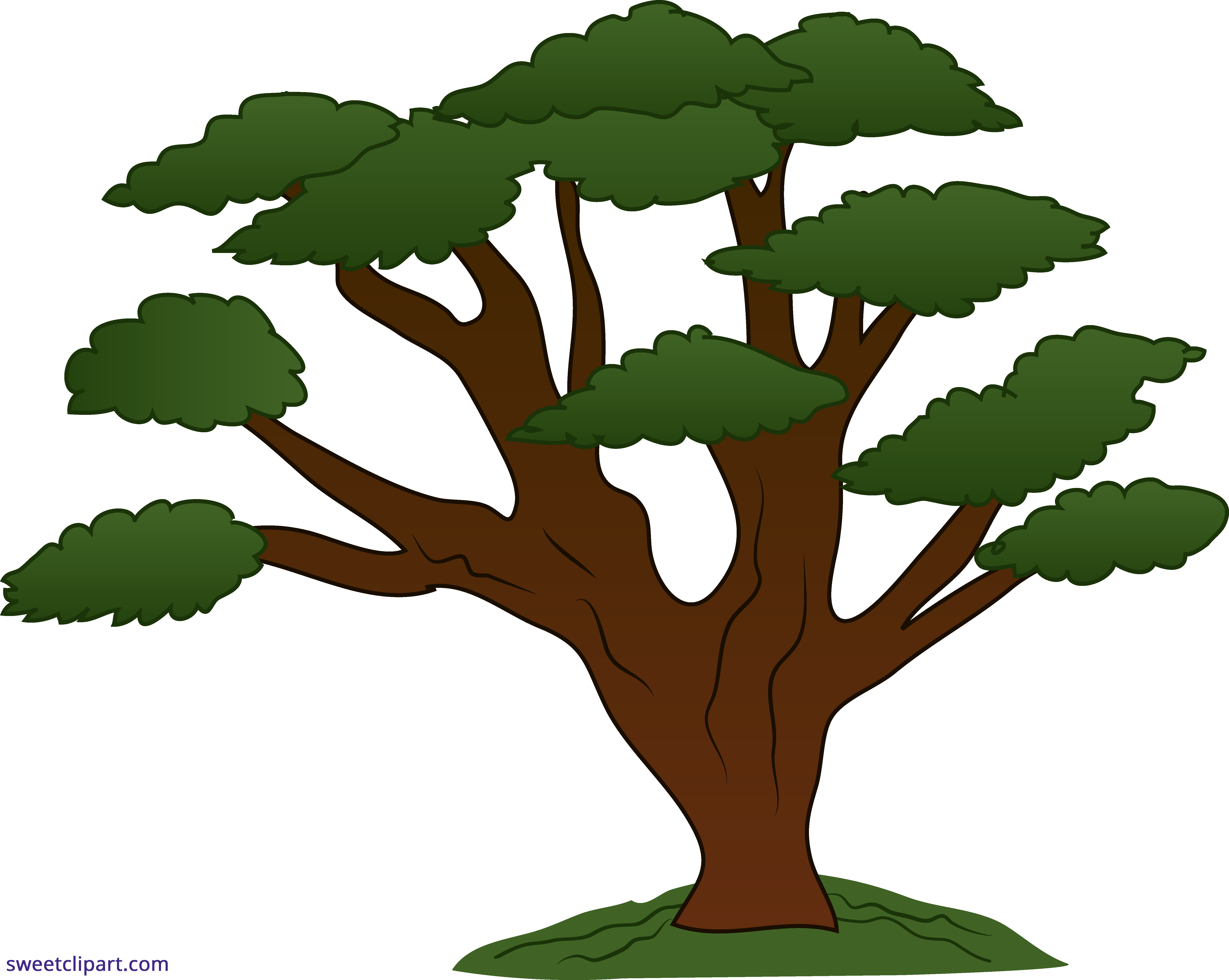 picture transparent download Tree sweeping sweet clip. Oak clipart