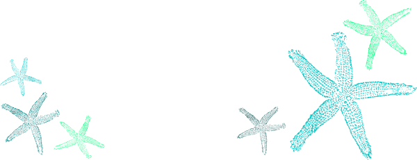 clip transparent library Starfish clip art at. Ocean border clipart