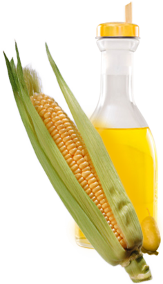 clipart download oil transparent corn #100541086