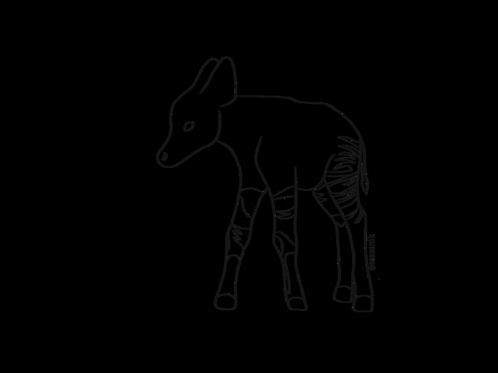 clip art royalty free download Okapi baby line art by sassanik on DeviantArt