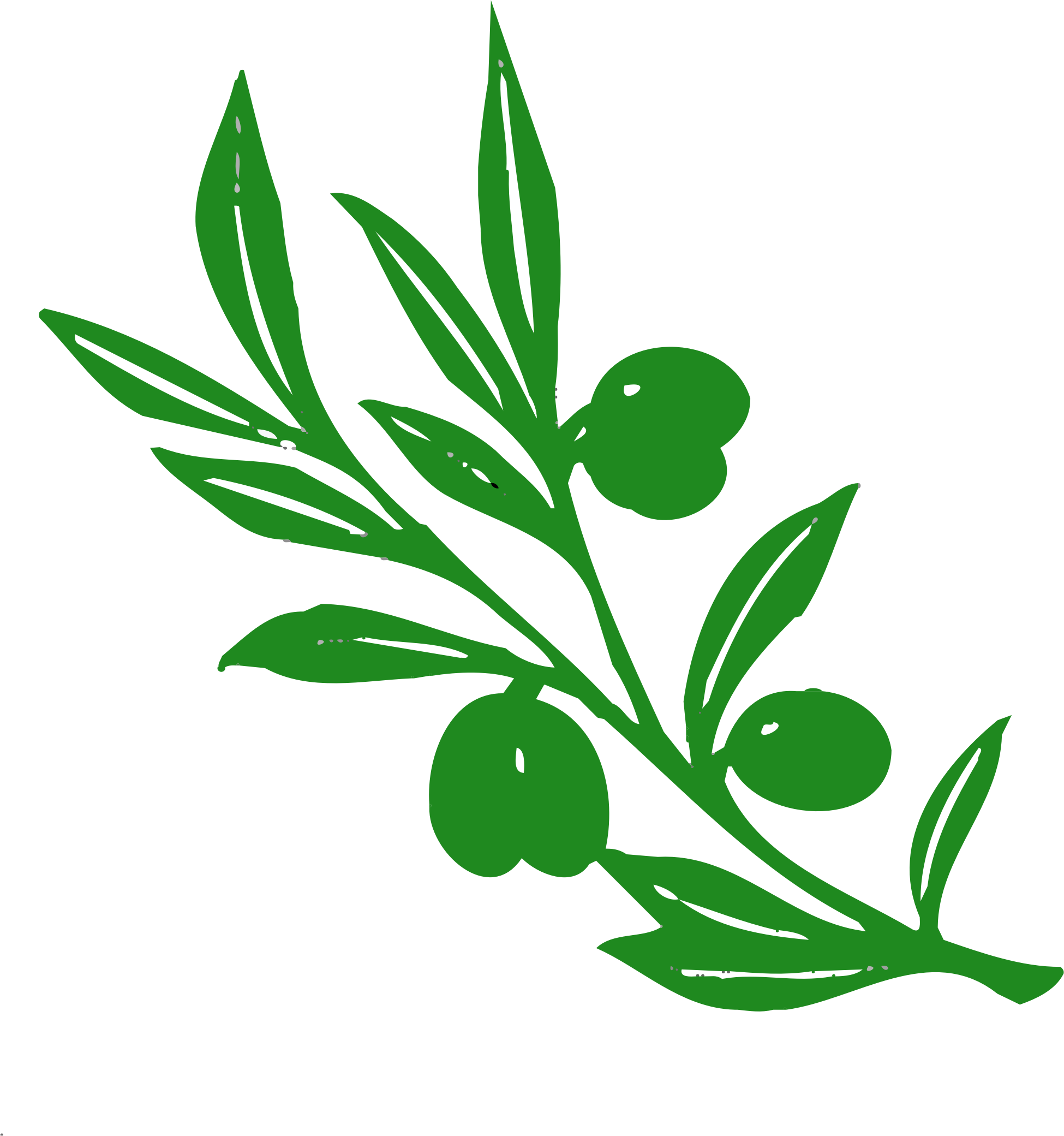 clip art transparent Olive clipart. Tree branch big image