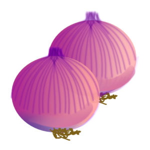 clip art royalty free stock Onion clipart. Clip art at clker