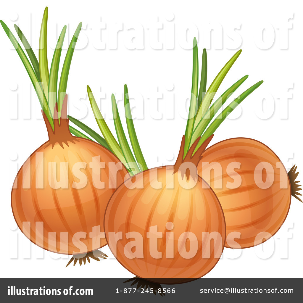 clip art library download Onion clipart. Illustration by graphics rf.