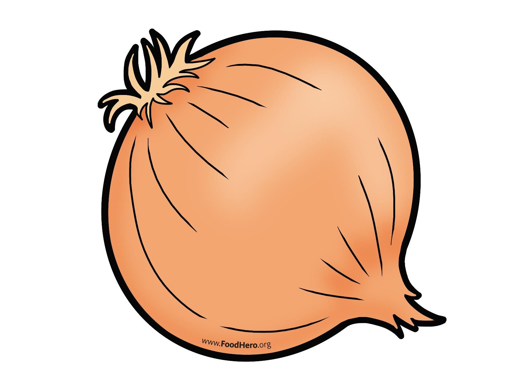 svg freeuse library Colored illustration ingredients vegetables. Onion clipart.