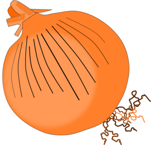 clip art royalty free stock Onion clipart. Clip art at clker.