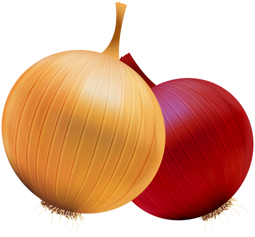 image black and white stock Onion and Red Onion PNG Clipart