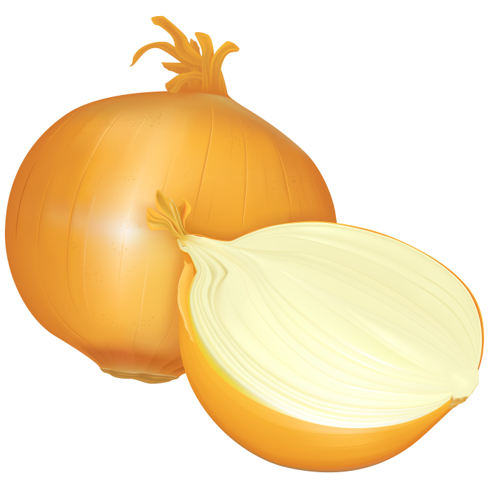 vector royalty free download Onion clipart chopped onion