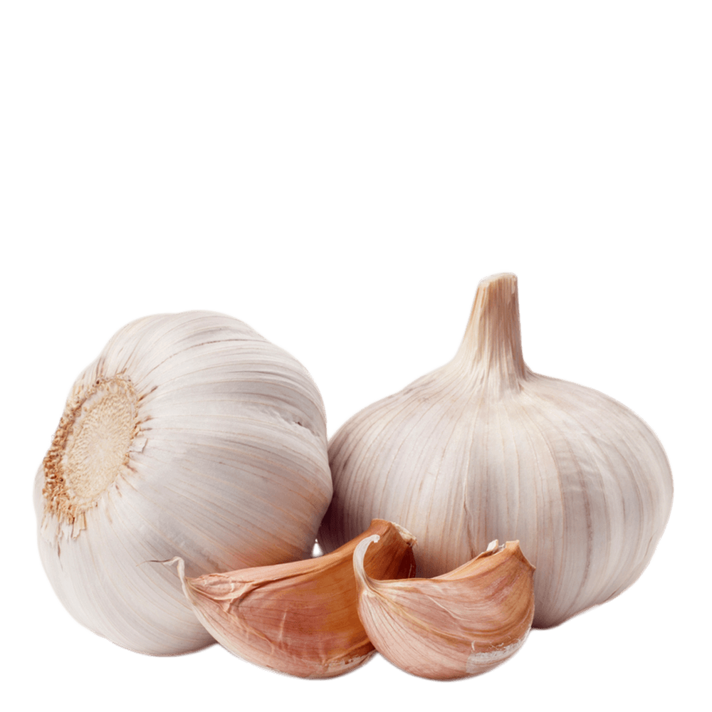 clip royalty free download Garlic transparent PNG images