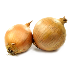 banner transparent download Onion Recipes