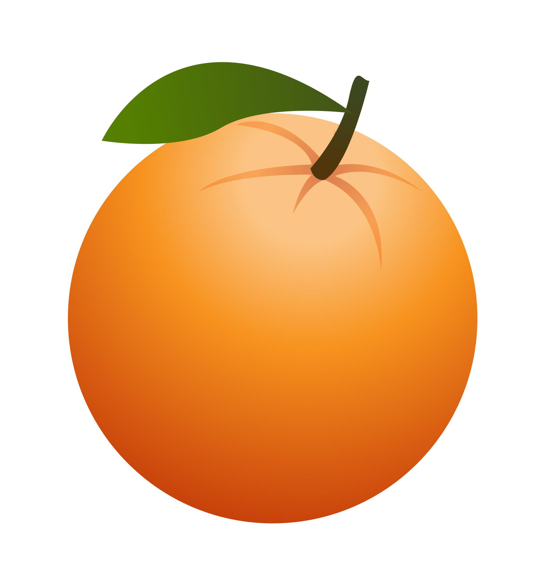 graphic library stock Orange clipart. Free cliparts download clip