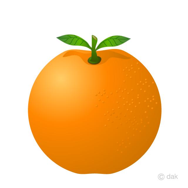vector library stock Orange free picture illustoon. Oranges clipart