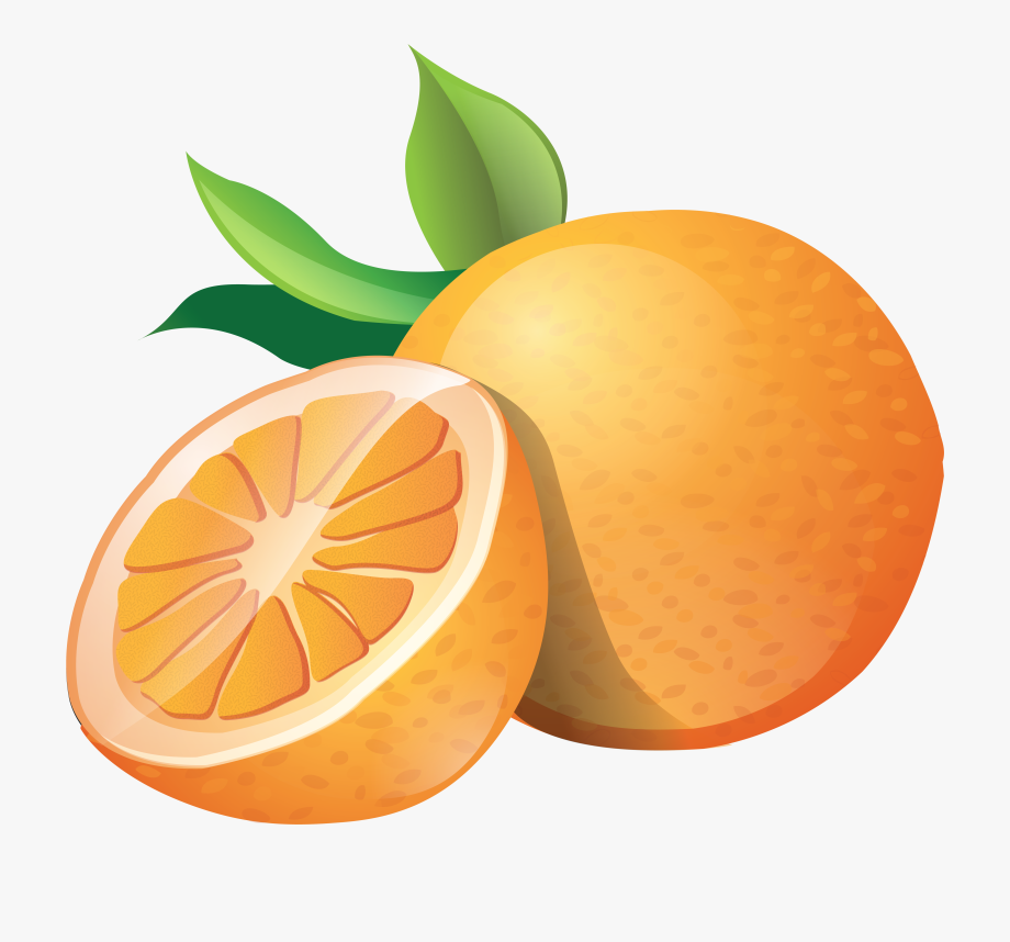 graphic transparent library Oranges clipart. Orange clip art free