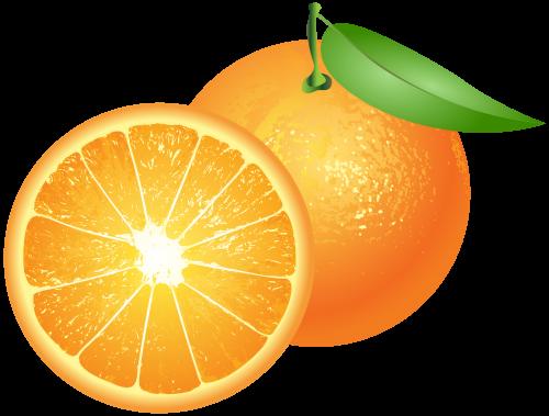 png library download Orange png clip art. Oranges clipart