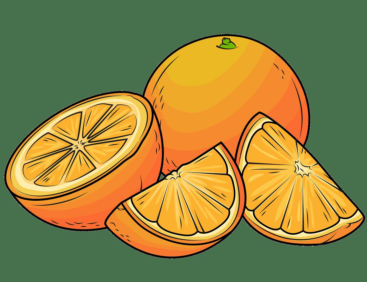 jpg library library Oranges clipart. Free download creazilla