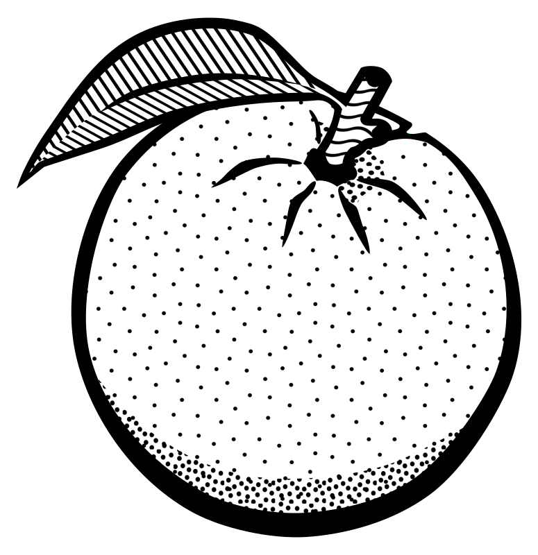 banner free download Oranges clipart black and white. Orange drawing at getdrawings