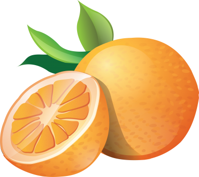 picture freeuse Oranges clipart socks. Uncategorized page clipartaz free