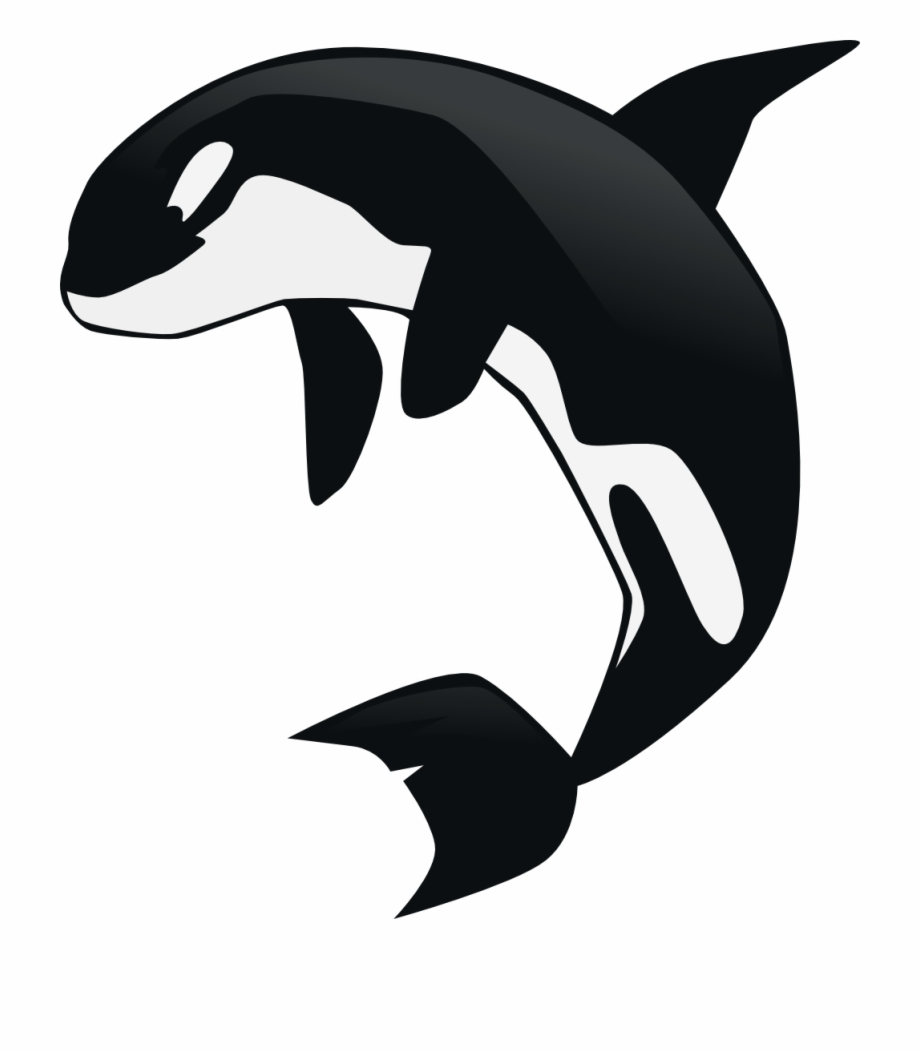 svg transparent Orca whale clipart. Funny clip art of