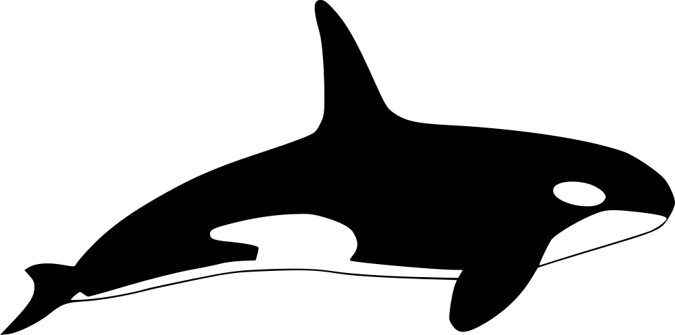image free stock Svg free on dumielauxepices. Orca clipart