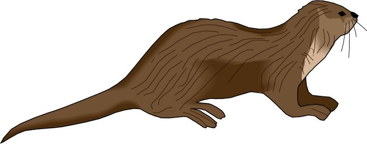 png freeuse Free cliparts download clip. Otter clipart.