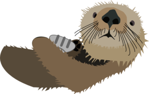 transparent stock Otter clipart. With shell clip art.