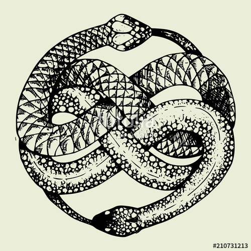 png free download Ouroboros vector. Tattoo stock image and