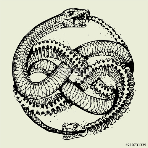 png free download Tattoo stock image and. Ouroboros vector