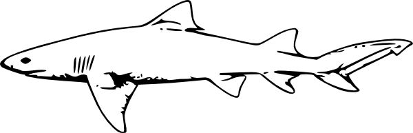 clipart black and white Lemon clip art at. Drawing sharks zebra shark