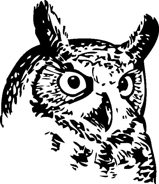 jpg stock Owl head at getdrawings. Drawing owls mystical