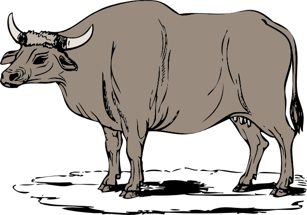 library Ox clipart. Gaur free on dumielauxepices
