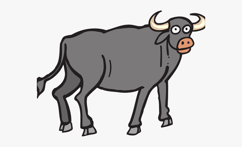 jpg freeuse download Ox clipart. Toro buffalo free cliparts
