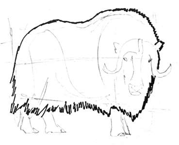 picture freeuse download How to draw a Musk ox