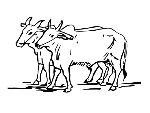 clipart download oxen drawing two #138457575