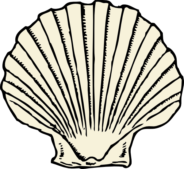 graphic library library Clam clipart clamshell. Scallop shell clip art