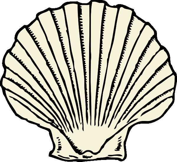 free download Scallop Shell clip art Free