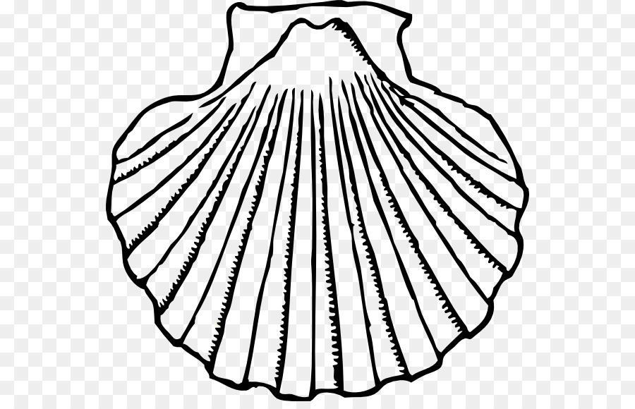 image royalty free library Clam seashell clip art. Oyster clipart black and white.