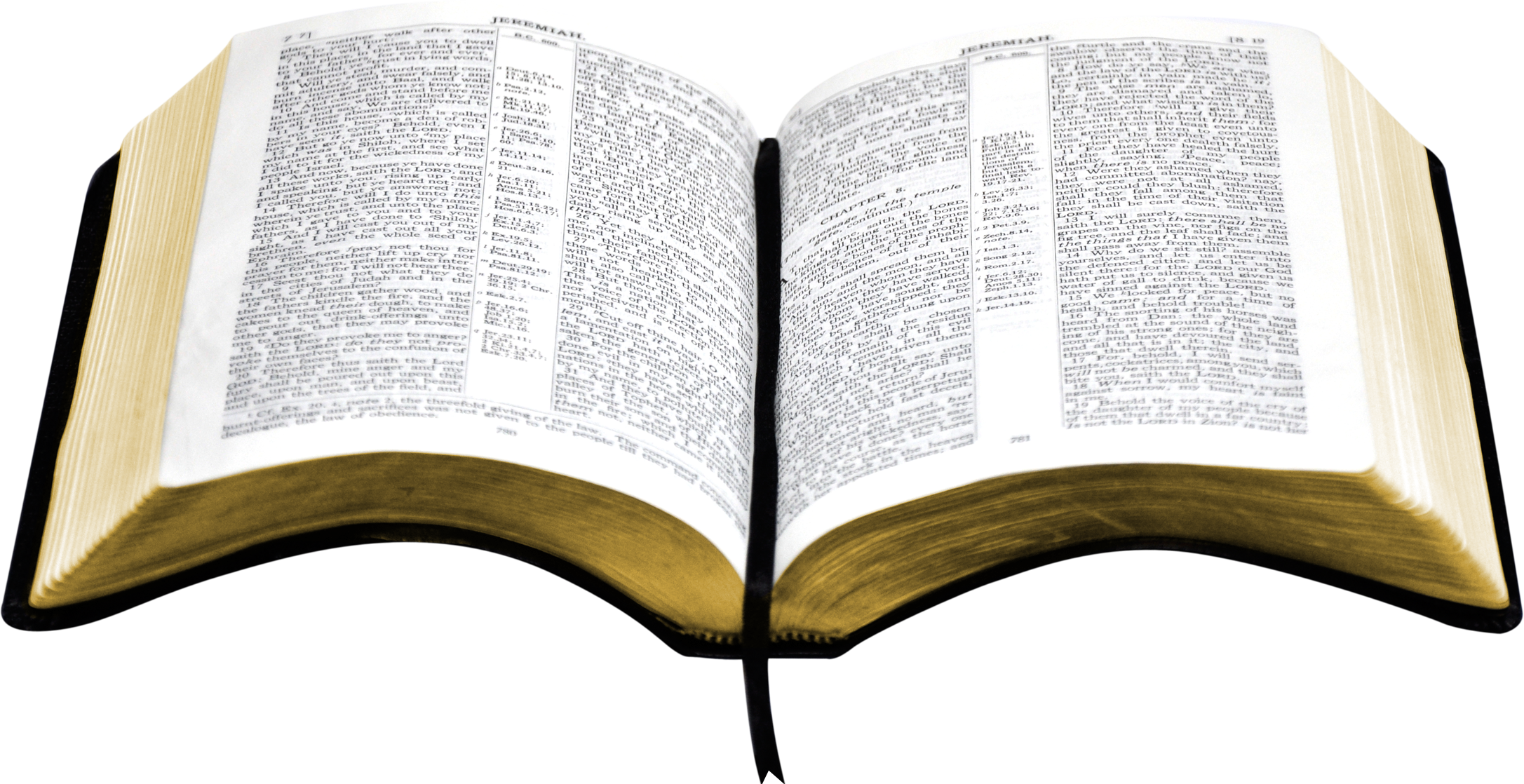 vector black and white open bible PNG