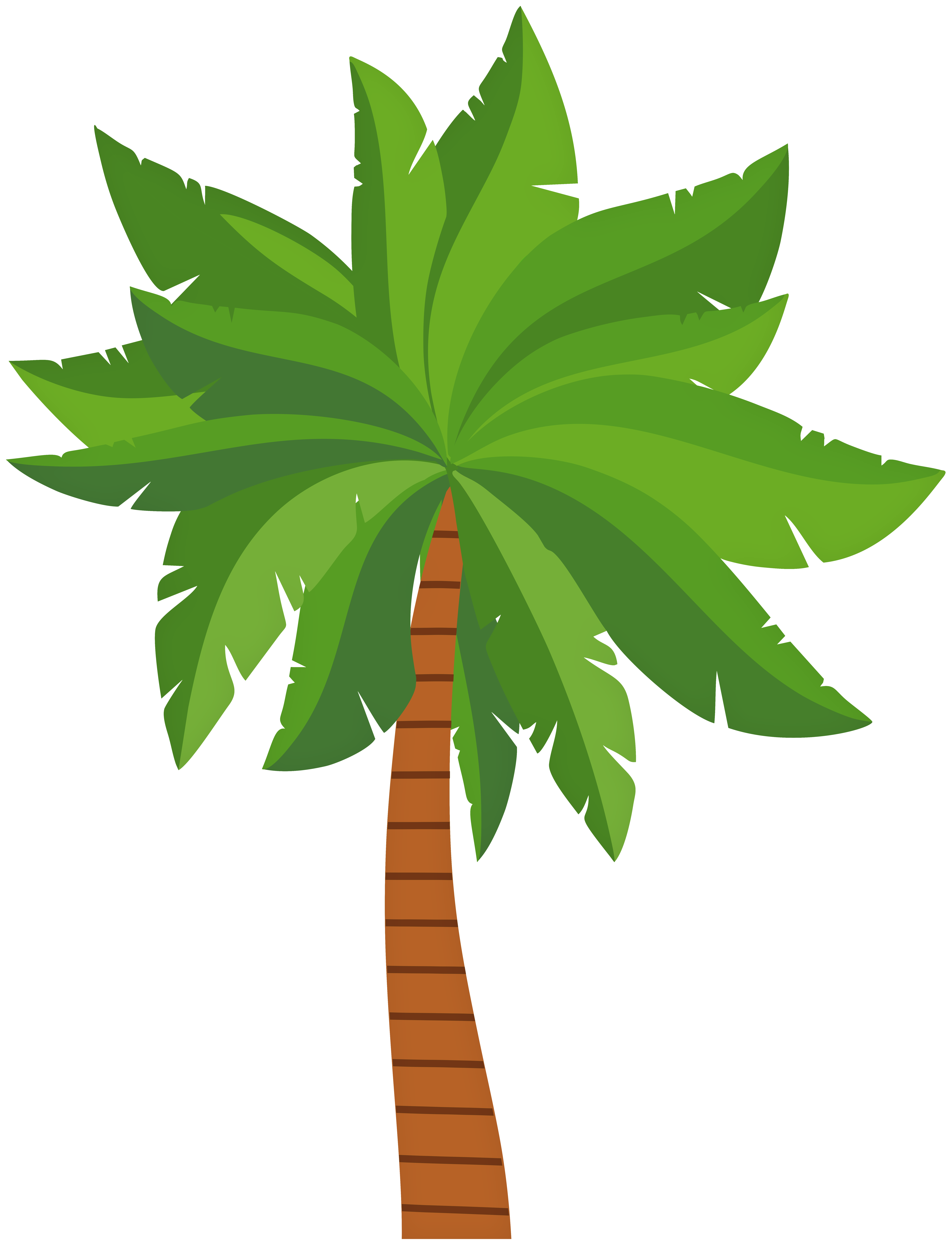 image transparent library Tree png clip art. Palm clipart.